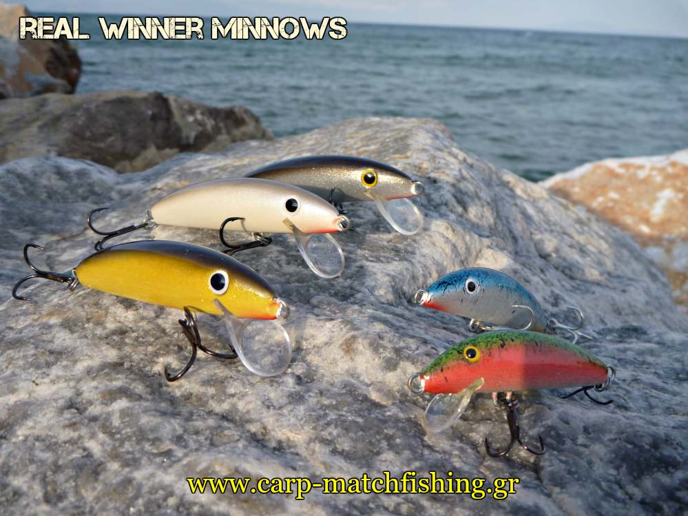 real-winner-minnows-rock-carpmatchfishing