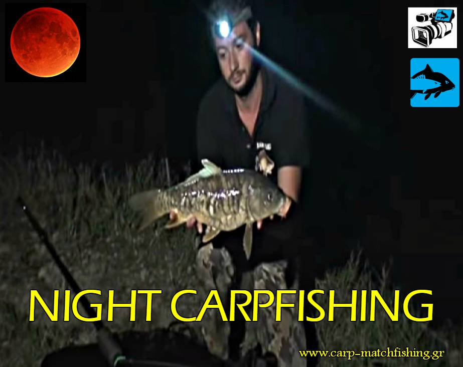 night carpfishing carpmatchfishing